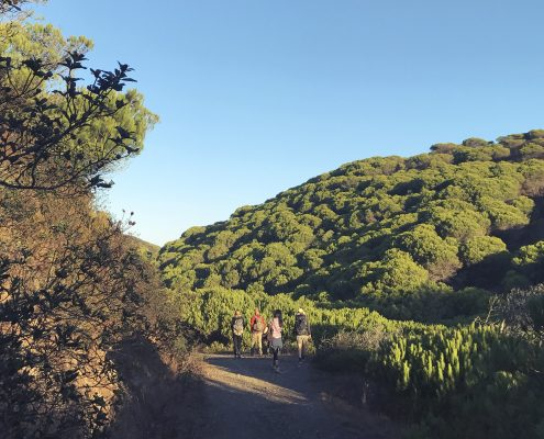 Nature Hike | Wolfs Yoga retreats Algarve, Portugal