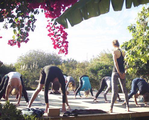 Ashtanga Vinyasa   Wolfs Yoga Retreat Portugal, Algarve