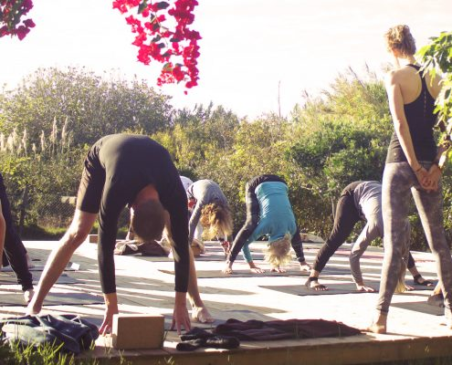Ashtanga Vinyasa | Wolfs Yoga Retreats Portugal