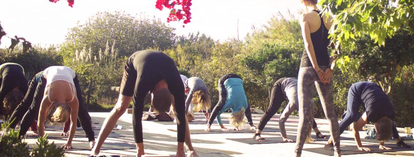 Ashtanga | Wolfs Yoga retreats Portugal, Algarve