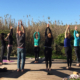 Discover Yoga Retreat | March 2018 ॐ WOLFS YOGA