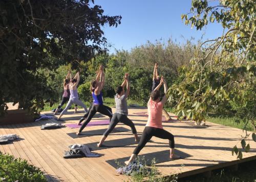 Previous Yoga Retreats ॐ WOLFS YOGA