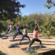 Ashtanga Retreat | May 2018 ॐ WOLFS YOGA