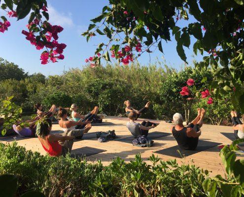 Yin Yang | Wolfs Yoga Retreats Portugal