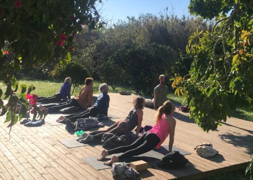 Yin Yang & Mindfulness Yoga Retreat | January 2019 ॐ WOLFS YOGA