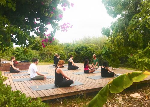 Ashtanga Vinyasa Yoga Retreat | July 2019 ॐ WOLFS YOGA
