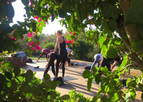 Ashtanga Vinyasa | Wolfs Yoga Retreats Portugal