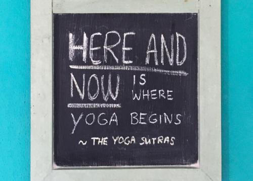 Ashtanga Vinyasa Yoga Retreat   November 2019 ॐ WOLFS YOGA
