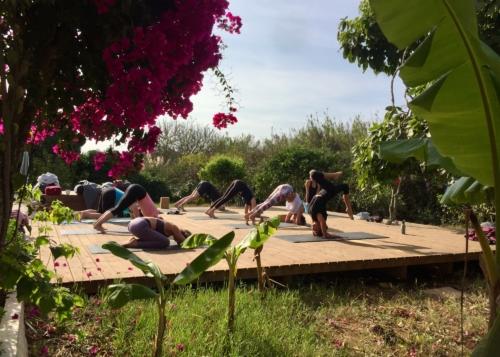 Yin Yang Mindfulness Yoga Retreat | September 19 2020 ॐ WOLFS YOGA