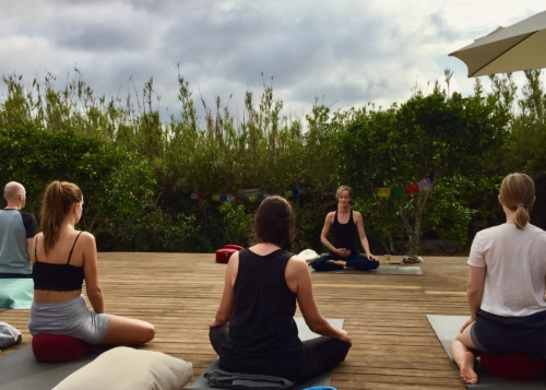 Yin Yang Mindfulness Yoga Retreat | September 12 2020 ॐ WOLFS YOGA