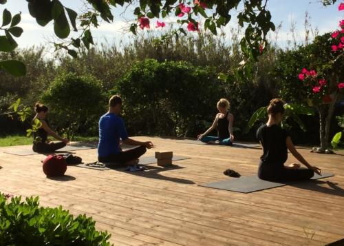 Ashtanga Vinyasa Yoga Retreat | November 14 2020 ॐ WOLFS YOGA