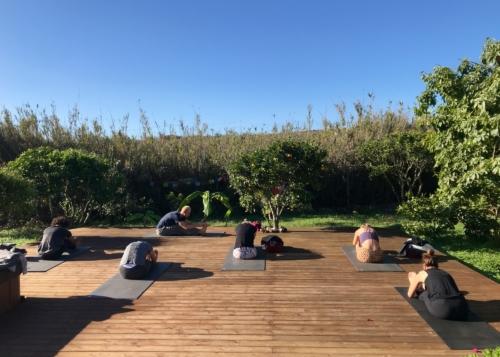 Ashtanga Vinyasa Yoga Retreat | November 7 2020 ॐ WOLFS YOGA
